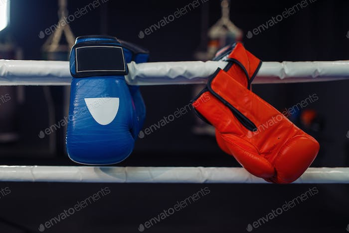 Red and blue boxing gloves on a ropes, nobody