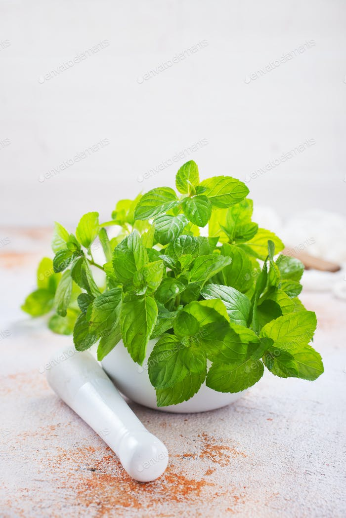 fresh mint leaf