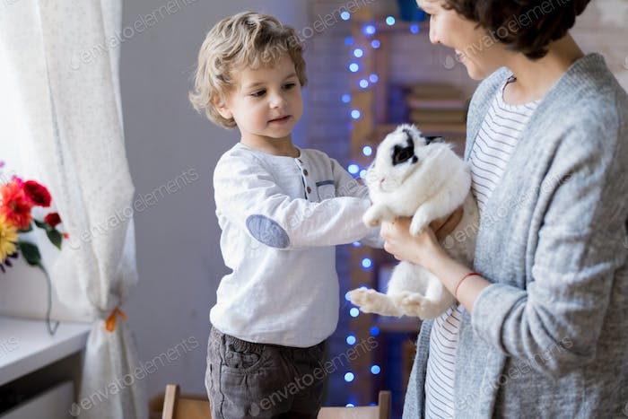 Mother Giving Pet Bunny to Son