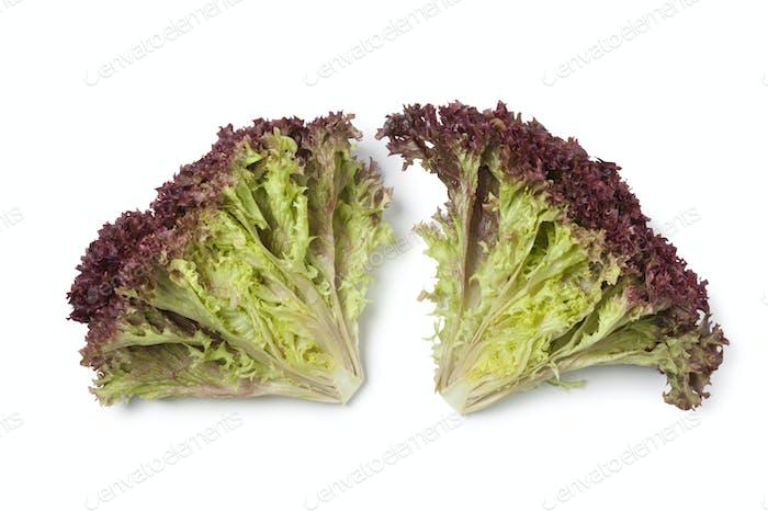Inside Lollo Rosso lettuce