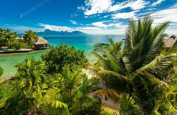 Overwater Bungalows mit besten Strand zum Schnorcheln, Tahiti, Fren