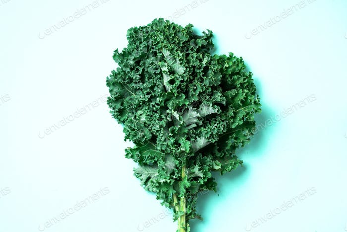 Fresh green raw kale leaves on trendy green background. Top view. Copy space. Superfood and healthy