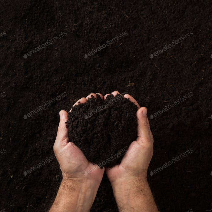 Two hands holding soil over dark texture