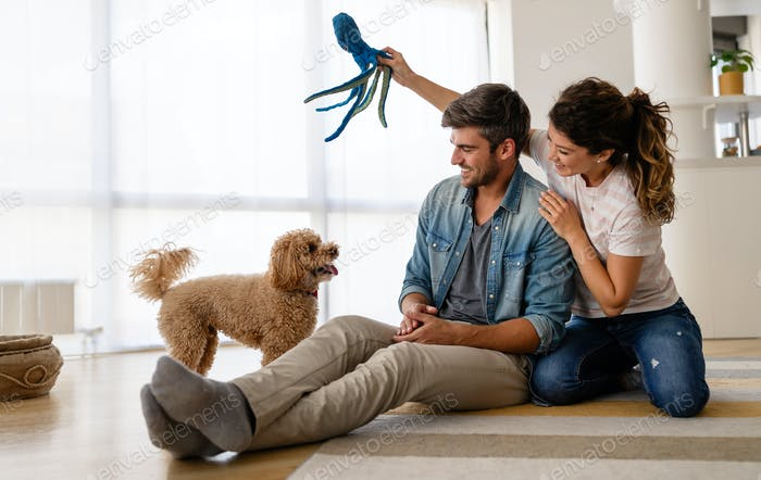 Happy family playing with their dog at home. People animal pet love concept