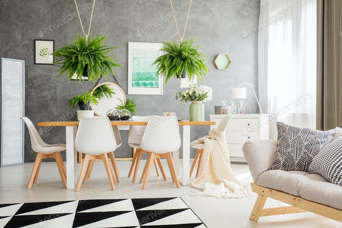 Ferns above dining table