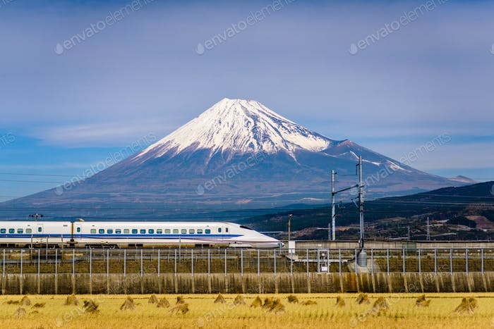 Mt. Fuji and Train