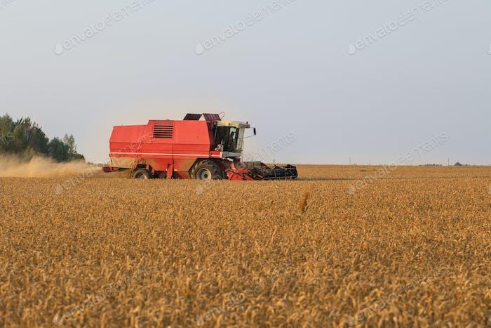 Erntemaschine im Weizenfeld
