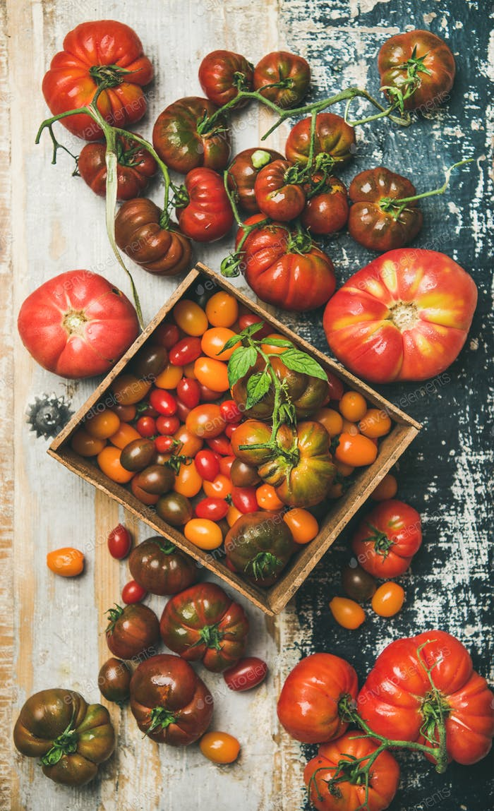 Flat -lay of fresh colorful tomatoes over rustic background