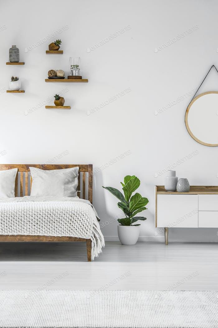Plant in minimal bedroom interior