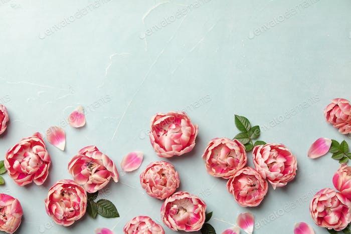 Flache lag dekorative Grenze von rosa Tulpen und grünen Blättern auf bl