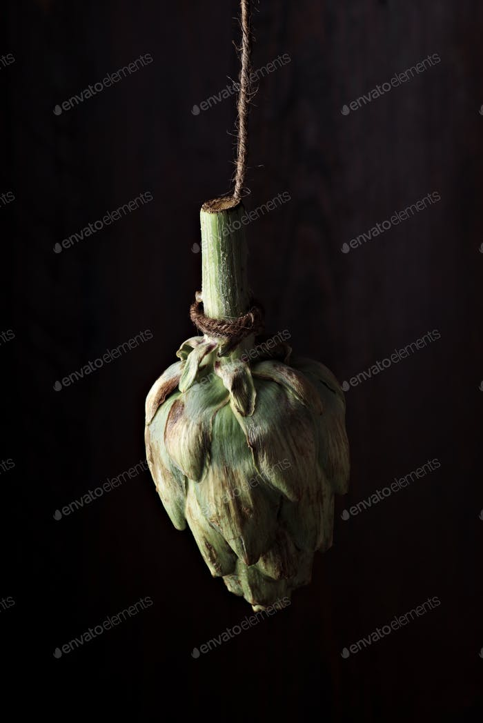 whole raw artichoke hanging on a rope in front of a dark wooden background