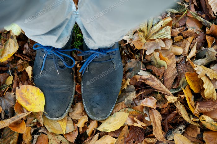 Standing on brown autumn leaves from above