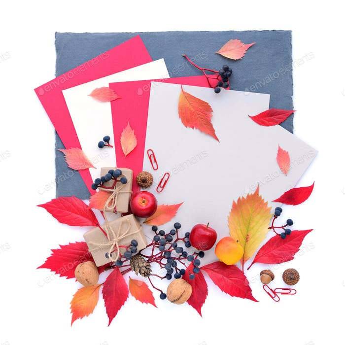 Autumn composition with sheets of paper and colorful leaves. Top
