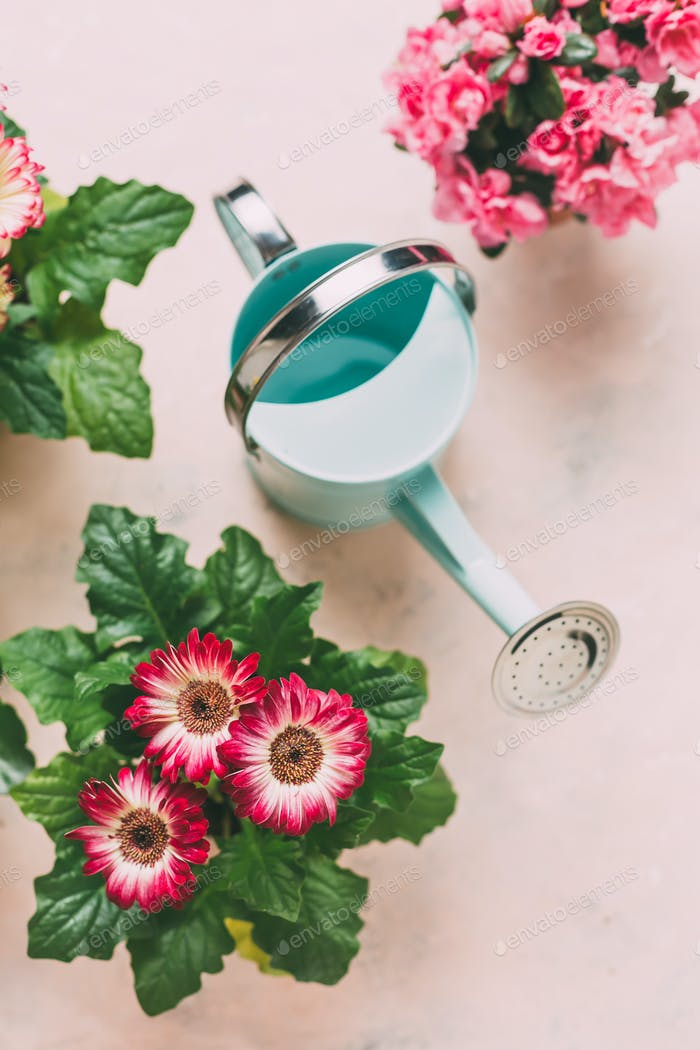 Watering can with pink flowers