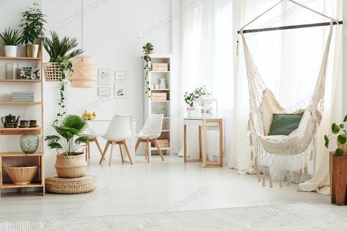 Hammock in bright living room