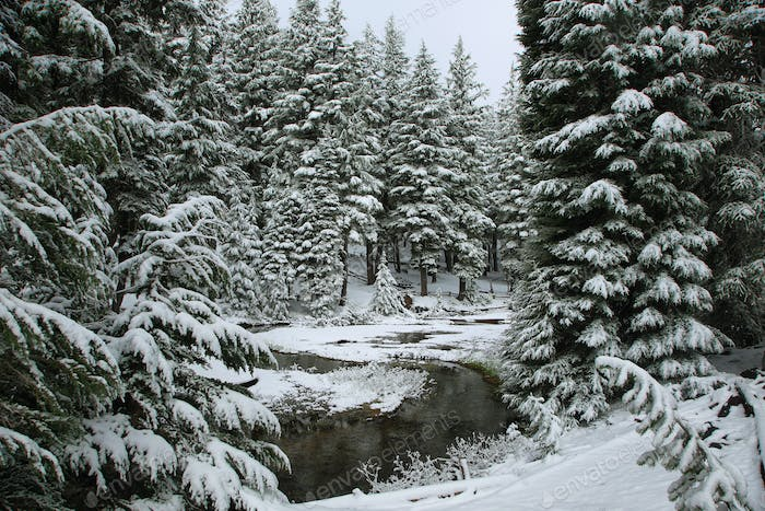 Winding stream in a snowy day on June