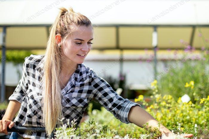 Клиент в садовом центре ищет растения
