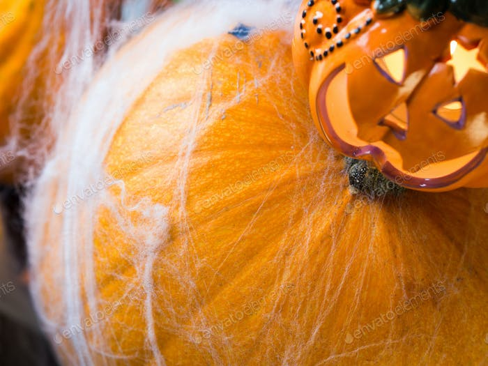 Halloween squash and candle. Spider net