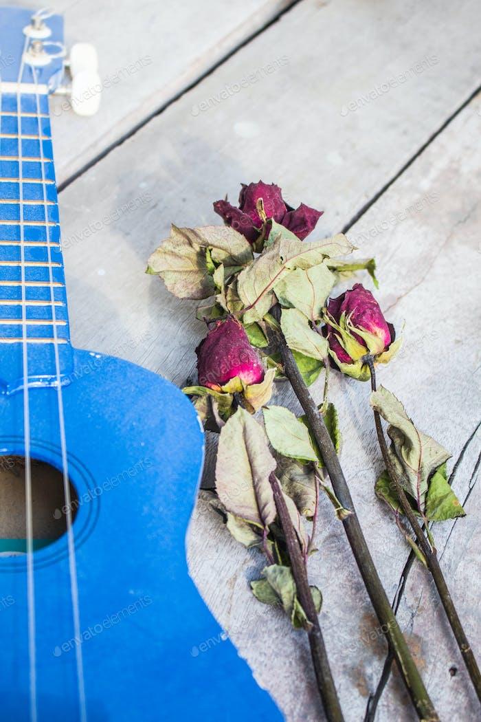 Trockene Rosen und Ukulele.