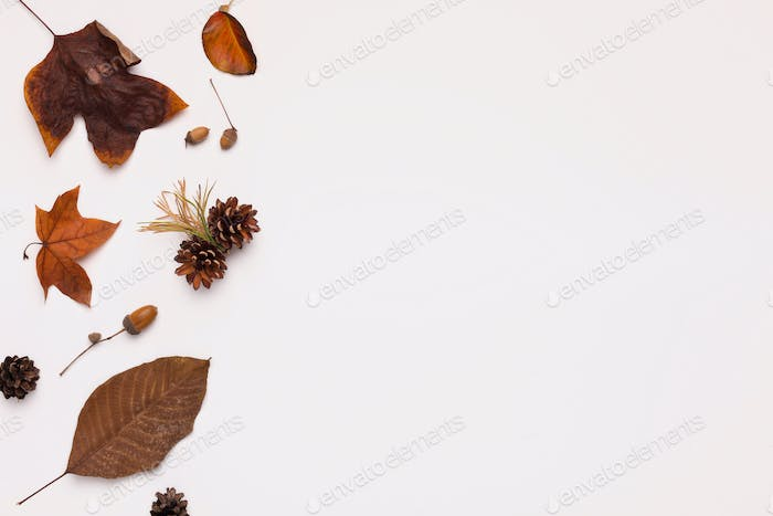 Creative brown colored autumn flat lay on white background