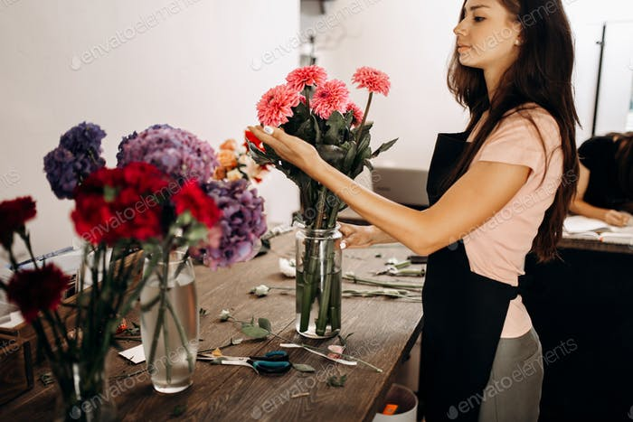 Beautiful woman florist in a black apron touches a pink chrysanthemums in vase
