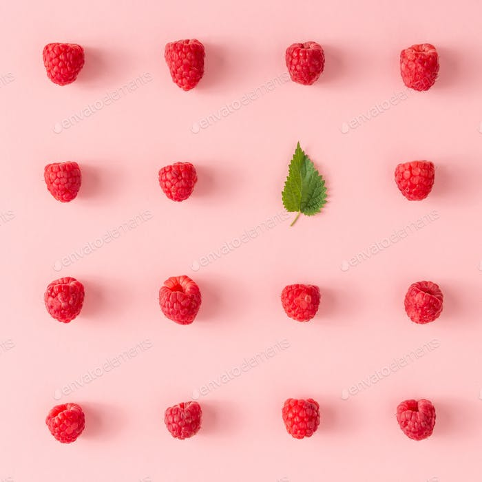 Creative neatly arranged food layout with raspberries and green leaf on pink background.