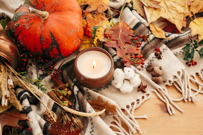 Pumpkin and candle with berries, fall leaves. Cozy inspirational image