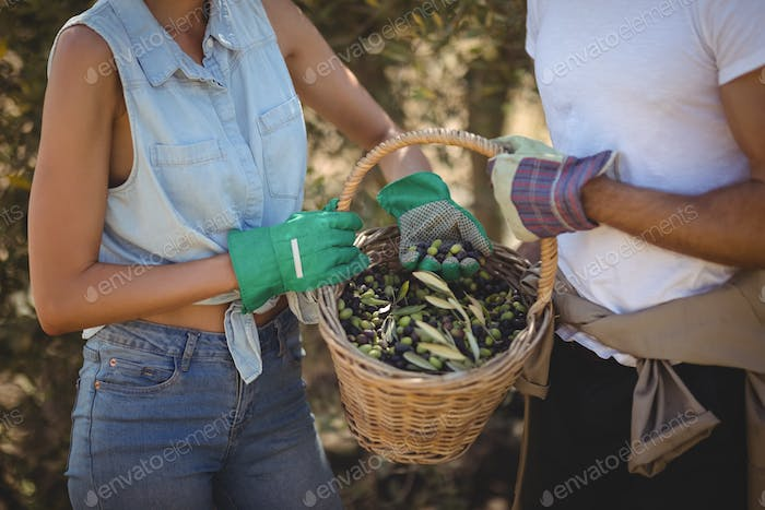 Mid section of young couple holding olives in basket
