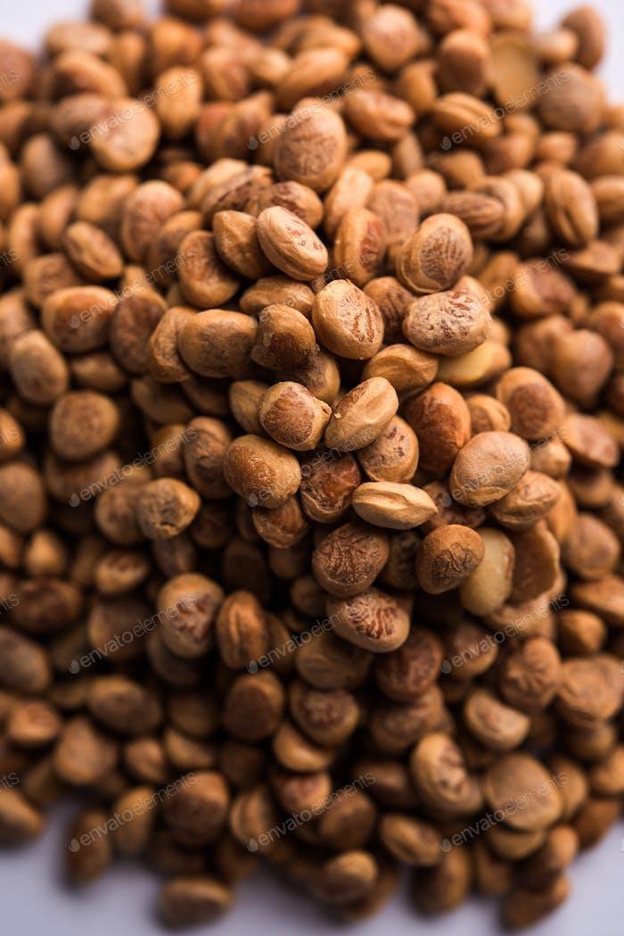 Almondette kernel seeds
