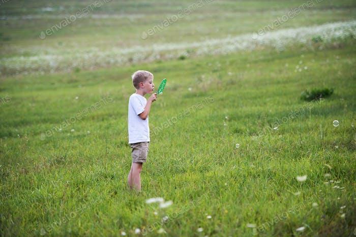 Маленький мальчик на природе в летний день, дует мыльные пузыри.