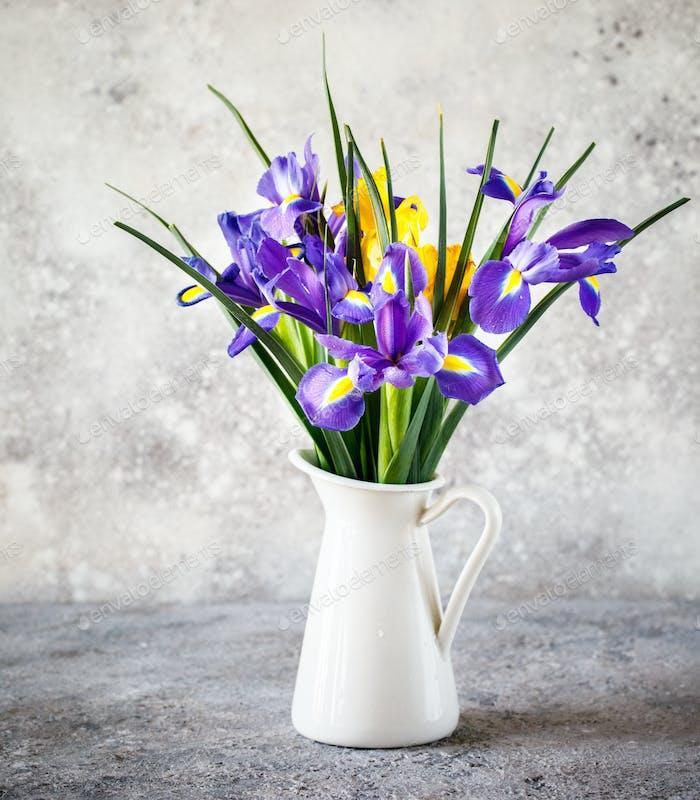 Irises purple are wonderful garden plants. Flowers as a symbol of spring.