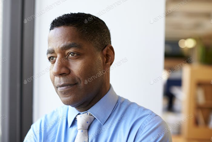 Smiling Mature  Businessman In Modern Office Standing By Window