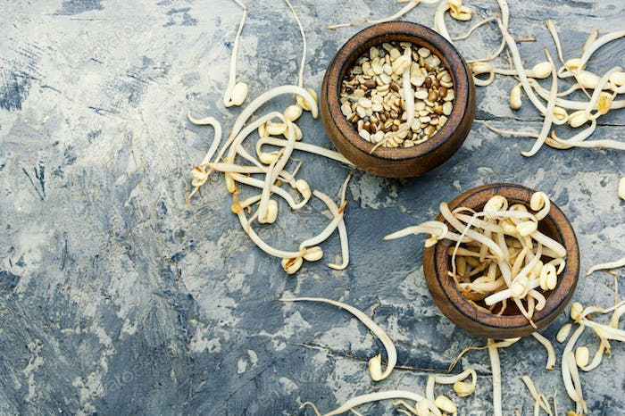 Sprout whole mung dal