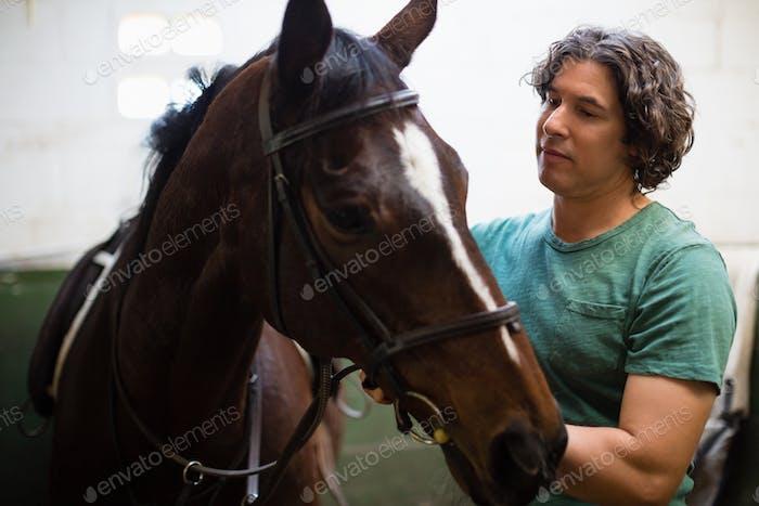 Mann streichelt das braune Pferd im Stall