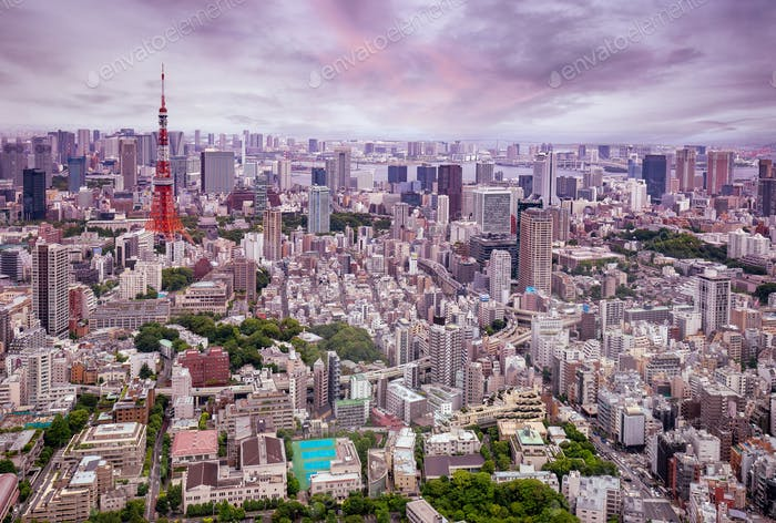Skyline de Tokio al anochecer