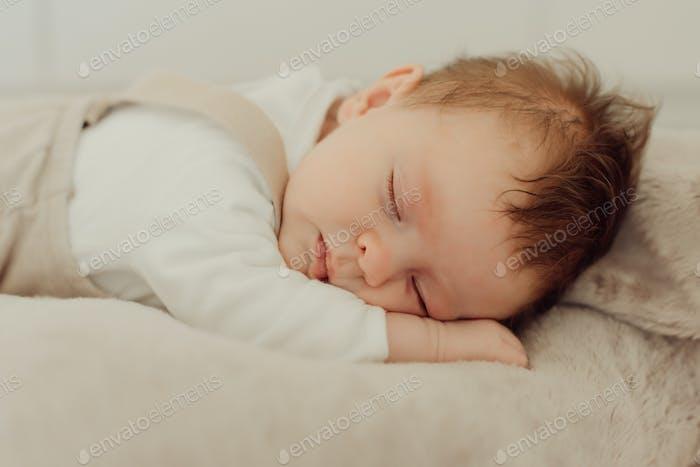 Portrait of a newborn baby sleeping