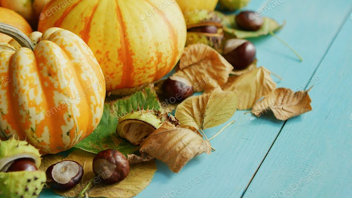 Pumpkins decorated with chestnuts and leaves