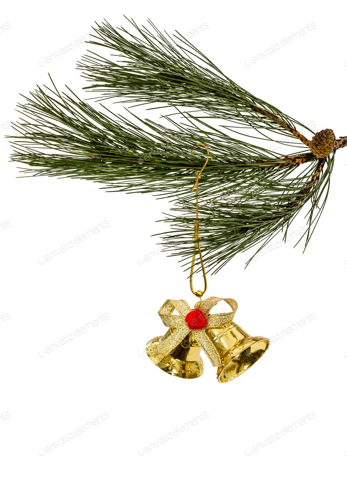 Golden christmas bell on spruce branch, isolated on a white back