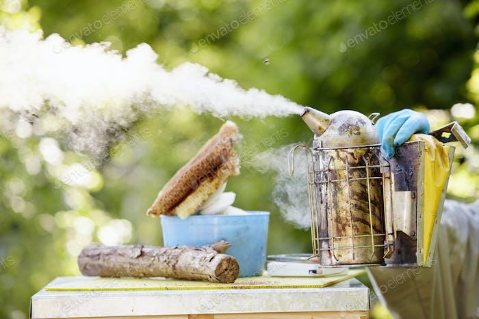 Ein Imker hält einen Metallraucher und bläst Rauch über einen Bienenstock.