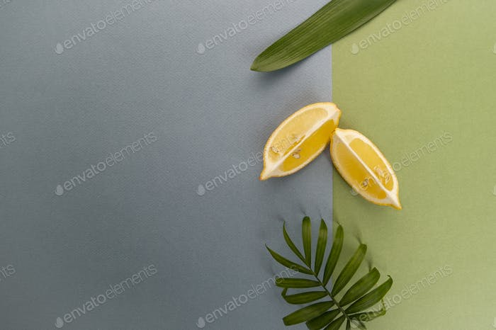 Two slices of lemon and green leaves on a blue-green pastel back