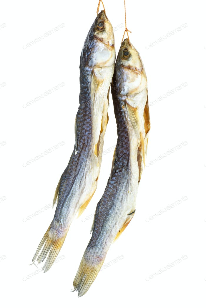 Salted mullet fishes