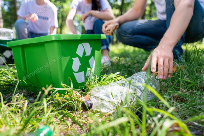 cropped view of volunteers with recycling box cleaning lawn together