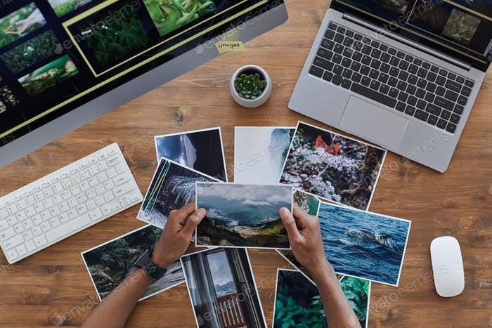 Travel Photographer Holding Pictures Top View