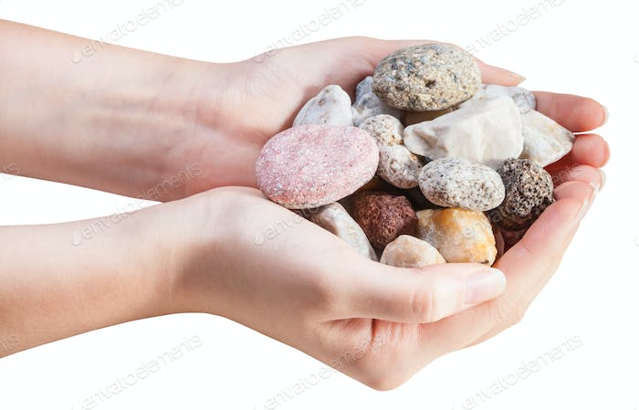 side view of various natural pebbles in handful