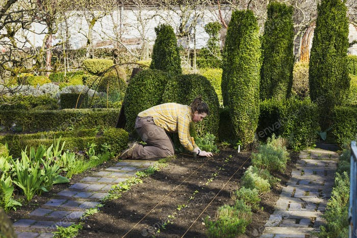Woman planting seedlings in a bed of soil in the kitchen garden of a hotel.