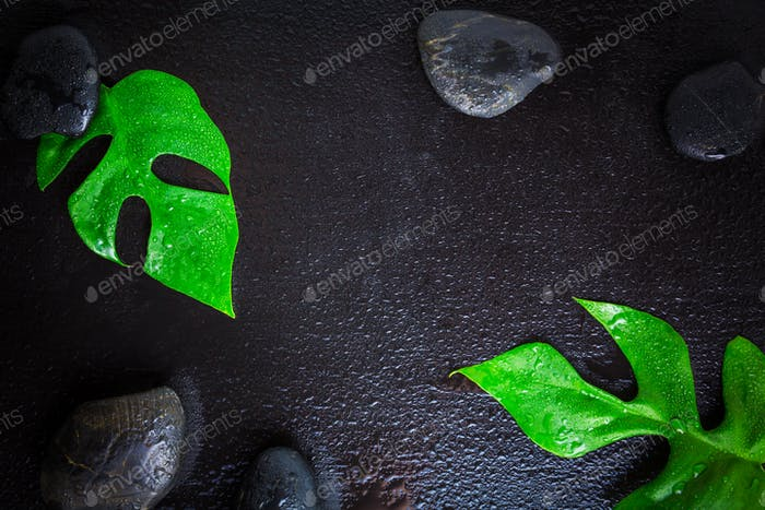 Flat lay composition with stones and monstera leaf on wet black background, space for text