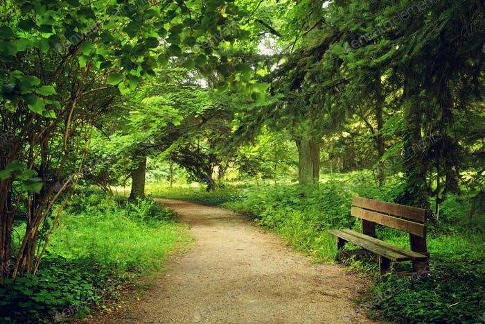 Footpath on the park