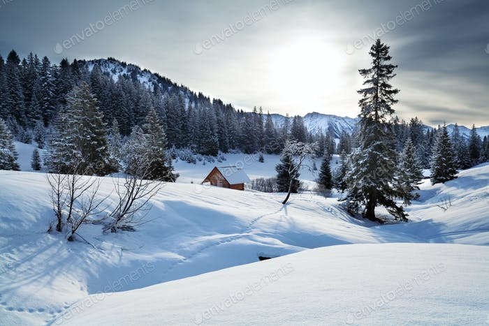 snowy hills in winter Alps