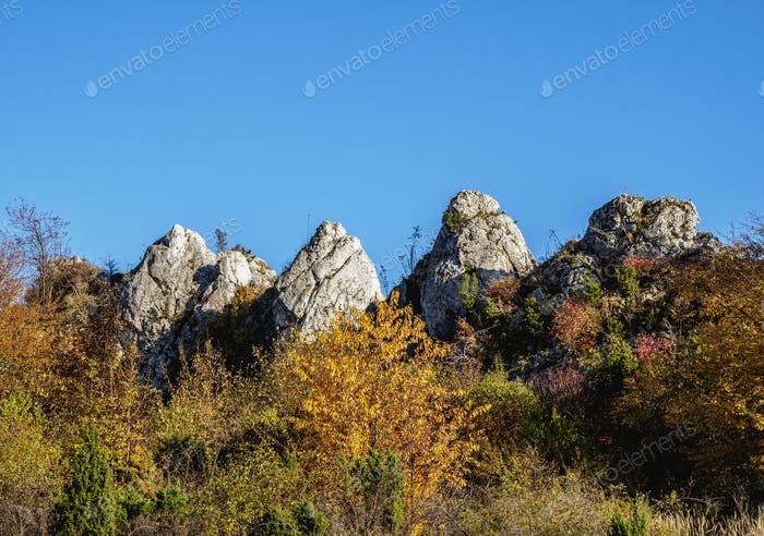 Rzedkowickie Rocks at Polish Jura