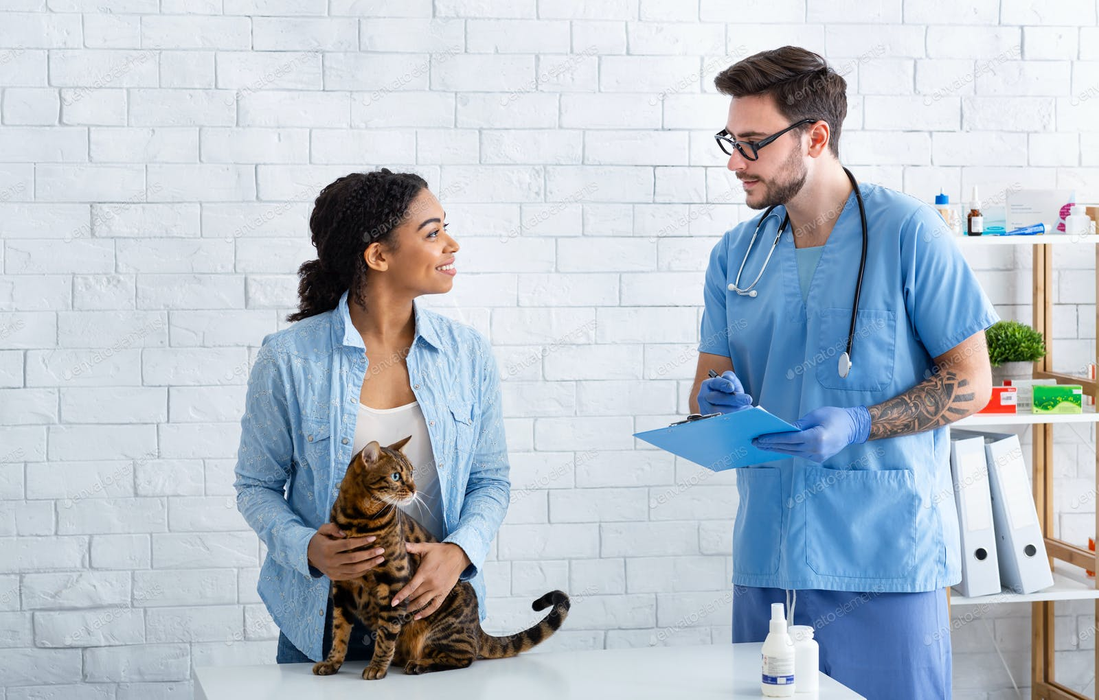 African American Woman With Tabby Cat On Visit To Vet Doctor At Medical Office Photo By Prostock Studio On Envato Elements
